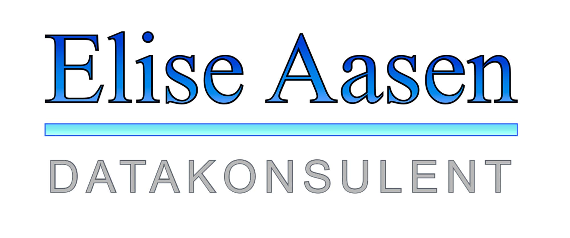 Datakonsulent Elise Aasen