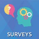 services surveys