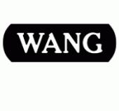 wang2
