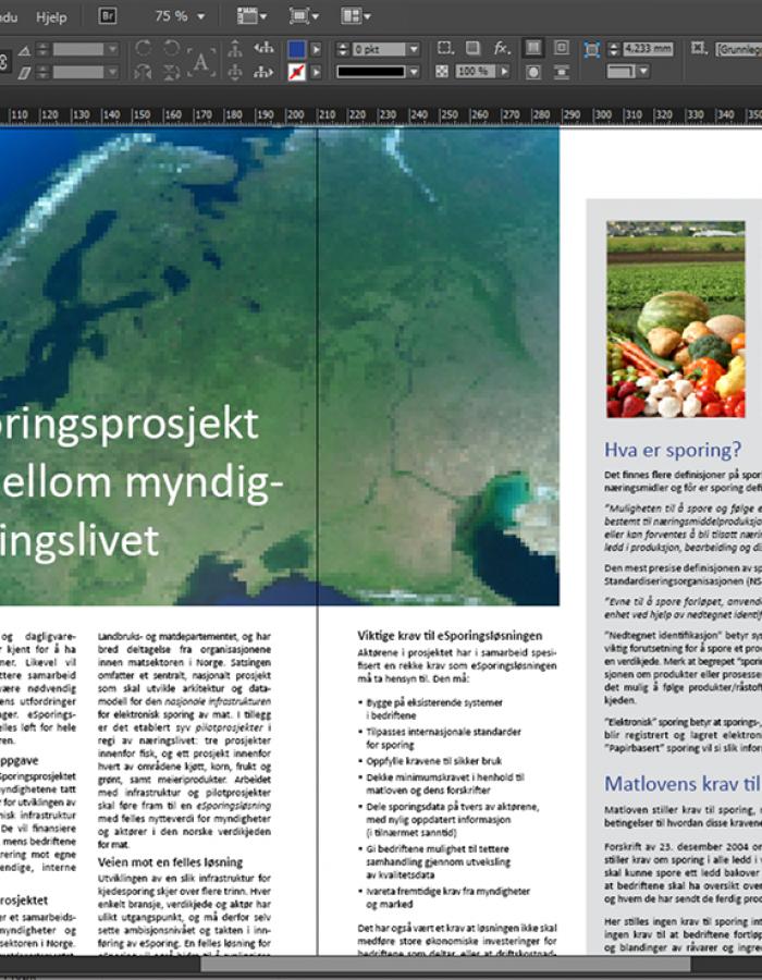 design InDesign layout norsk brosjyre
